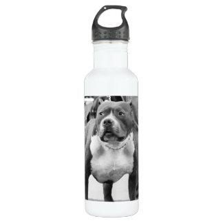 American Staffordshire Terrier 24oz Water Bottle