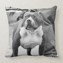 American Staffordshire Terrier Pillow
