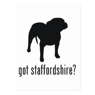 American Staffordshire Terrier Postcard