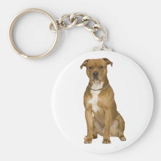 American Staffordshire Terrier  Puppy Dog Keychain