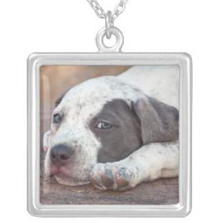 American Staffordshire Terrier puppy lying down Square Pendant Necklace