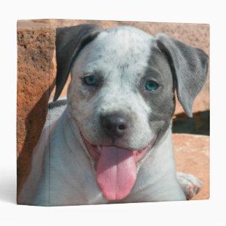 American Staffordshire Terrier puppy Portrait 3 Ring Binder