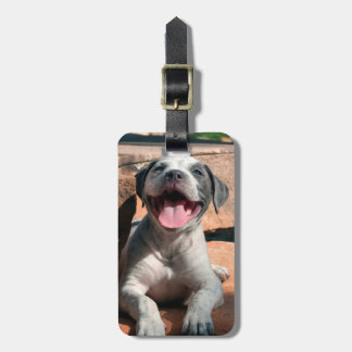 American Staffordshire Terrier puppy Portrait 4 Luggage Tag