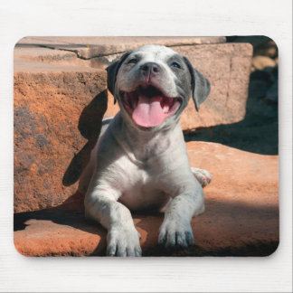 American Staffordshire Terrier puppy Portrait 4 Mouse Pad