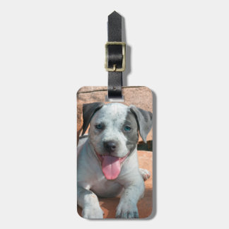 American Staffordshire Terrier puppy Portrait Bag Tag