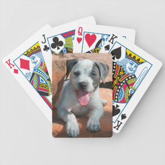 American Staffordshire Terrier puppy Portrait Bicycle Playing Cards