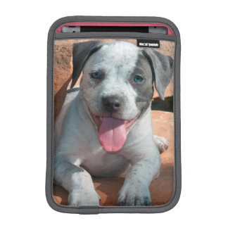 American Staffordshire Terrier puppy Portrait iPad Mini Sleeves