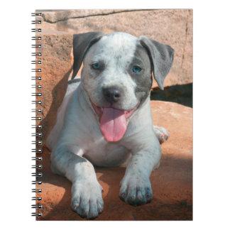American Staffordshire Terrier puppy Portrait Notebook