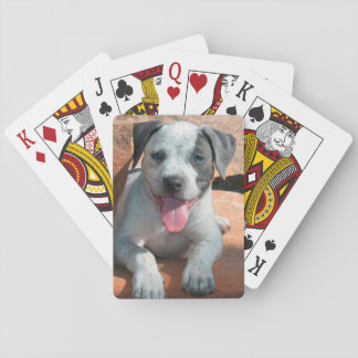 American Staffordshire Terrier puppy Portrait Playing Cards