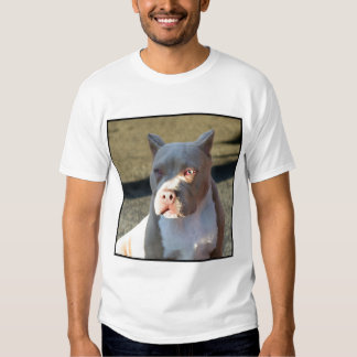 American Staffordshire Terrier puppy T-Shirt