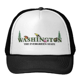 American States  - Washington Truckers Hat