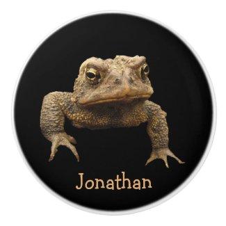 American Toad Ceramic Knob