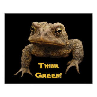 American Toad Earth Day Poster