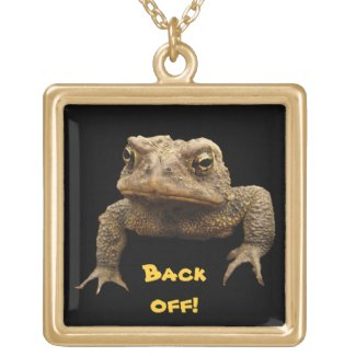 American Toad Jewelry