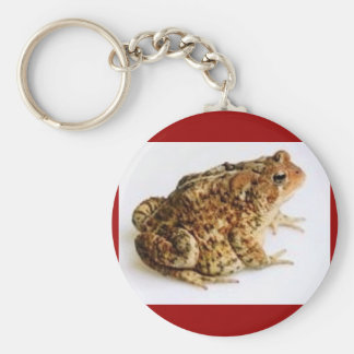 AMERICAN TOAD Keychain