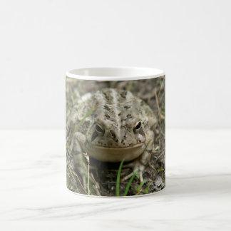 American Toad Mug. Coffee Mug