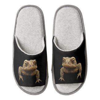 American Toad Pair of Open Toe Slippers
