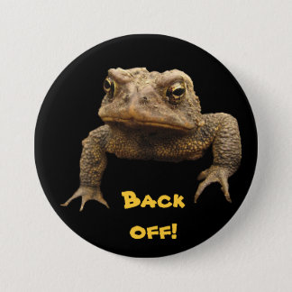 American Toad Pinback Button