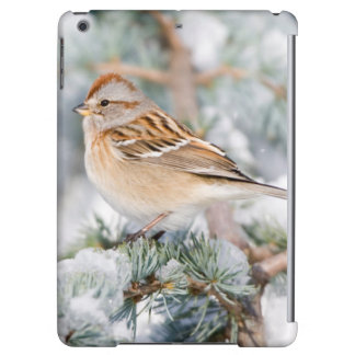 American Tree Sparrow in winter iPad Air Cases
