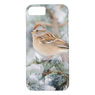 American Tree Sparrow in winter iPhone 7 Case