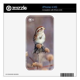 American Tree Sparrow iPhone 4 Decal