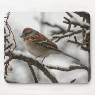 American Tree Sparrow Mouse Pad