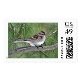 American Tree Sparrow Postage