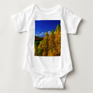 American Trees Fall Season Nature Photography Baby Bodysuit