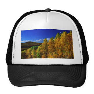 American Trees Fall Season Nature Photography Trucker Hat
