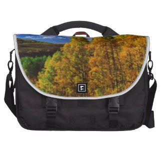American Trees Fall Season Nature Photography Laptop Messenger Bag