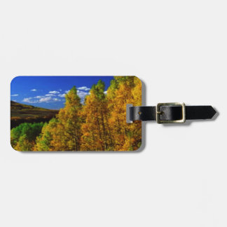 American Trees Fall Season Nature Photography Luggage Tags
