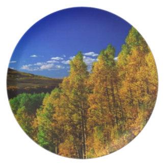 American Trees Fall Season Nature Photography Melamine Plate
