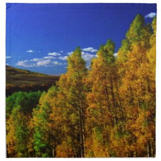 American Trees Fall Season Nature Photography Napkin