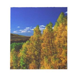 American Trees Fall Season Nature Photography Notepad