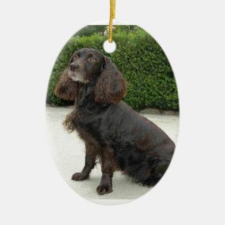 American Water Spaniel Dog Ceramic Ornament