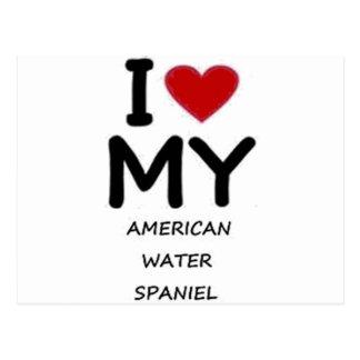 american water spaniel postcard