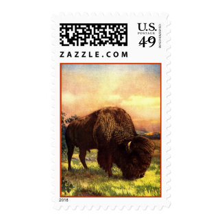 American Western Painting Buffalo Postage Stamp