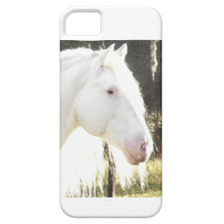 American White Draft Stallion iPhone 5 Cover