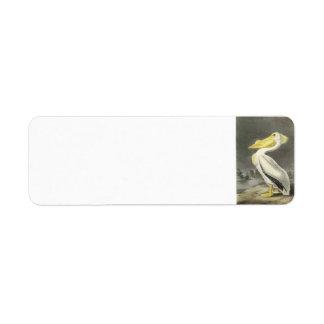 American White Pelican by Audubon Label