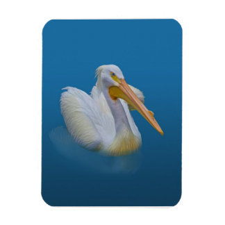 American White Pelican Flexible Magnet