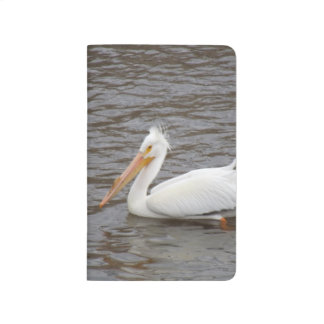 American White Pelican In Breeding Condition Journal
