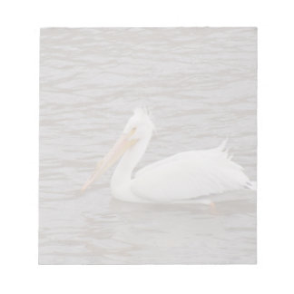 American White Pelican In Breeding Condition Notepad