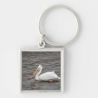 American White Pelican In Breeding Condition Silver-Colored Square Keychain