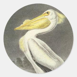 American White Pelican, John Audubon Classic Round Sticker