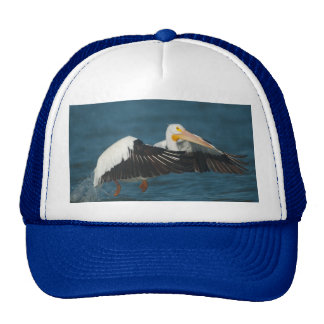 American White Pelican Taking Flight from water Trucker Hat