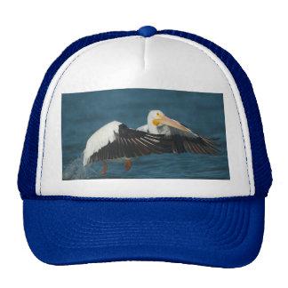 American White Pelican Taking Flight from water Trucker Hat