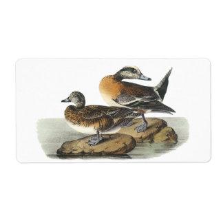 American Wigeon, John Audubon Label