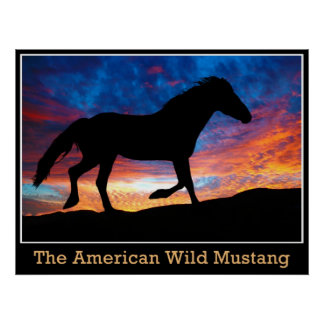 American Wild Mustang Poster