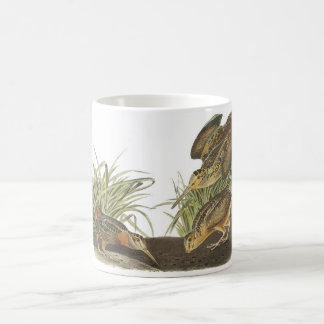 American Woodcock by Audubon Coffee Mug