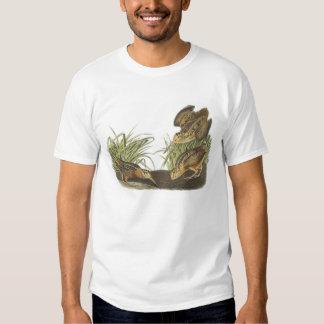 American Woodcock by Audubon T-shirt
